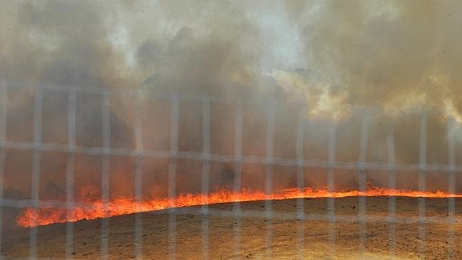 A fast-moving blaze in Gisborne. Picture: Jay Town.