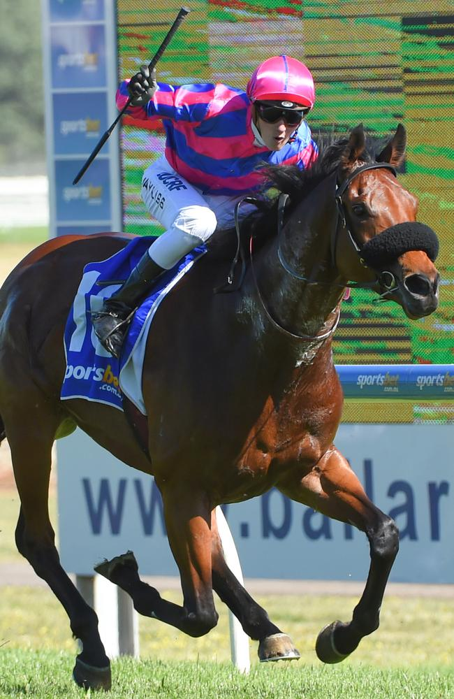 Regan Bayliss and Pilote D'Essai combine to catch their rivals napping and score an all-the-way victory in the Ballarat Cup. Picture: Getty Images