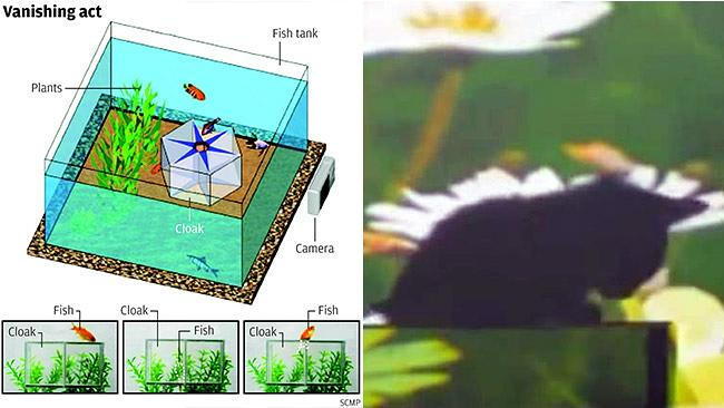 "Images released by a Chinese university show how they are experimenting with an ""invisibility cloak"" in the vis..."
