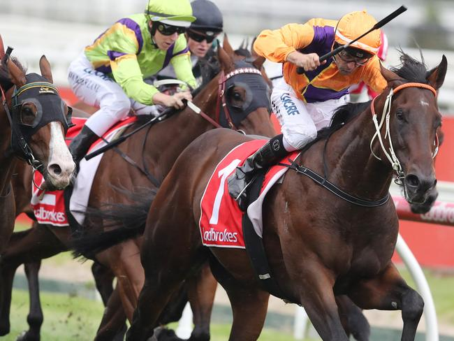 Overshare salutes on Blue Diamond Stakes Day. Picture: AAP