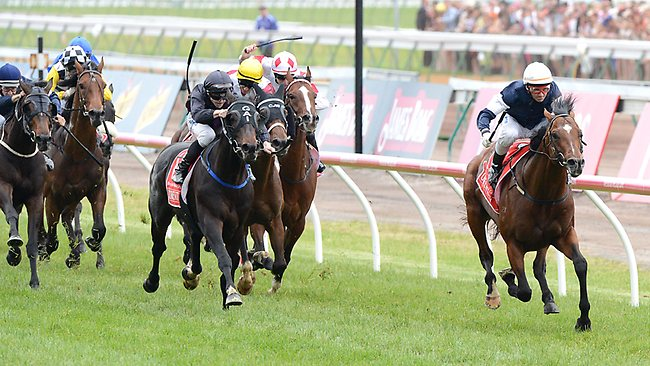 Green Moon burst clear to win the Melbourne Cup. Can he repeat the dose in 2013?