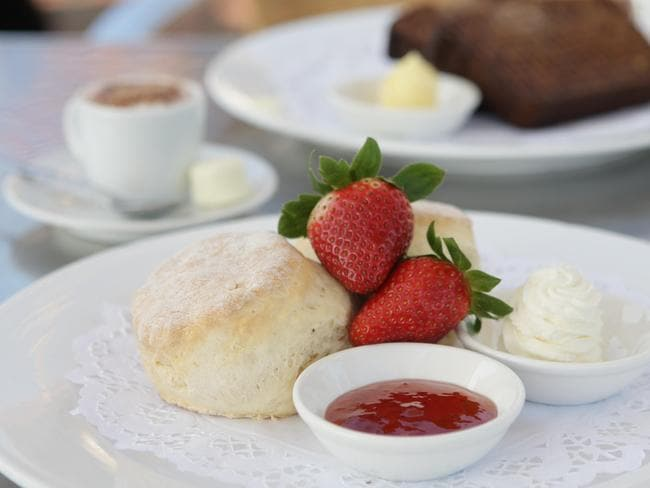 The scones with jam and cream at Tea House in Watsons Bay.