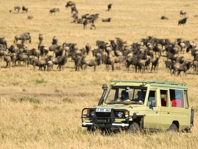 The annual great migration of wildebeest in the Serengeti National Park in Tanzania. Picture: Asilia/Encompass Africa