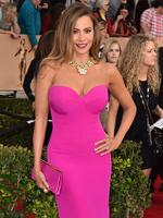 Modern Family star Sofia Vergara arrives fashionably late at the 22nd annual Screen Actors Guild Awards. Picture: Jordan Strauss/Invision/AP