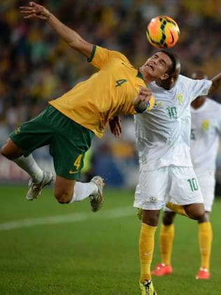 The World Cup ... in jeopardy, says SBS.