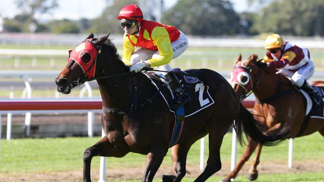 Last start winner Discreet reserves her best form for the Doomben track. Picture: Peter Wallis.