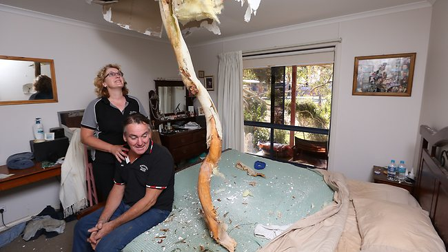 A tree crashed through the roof of Michael and Maree Bourke's home. Picture: Simon Dallinger