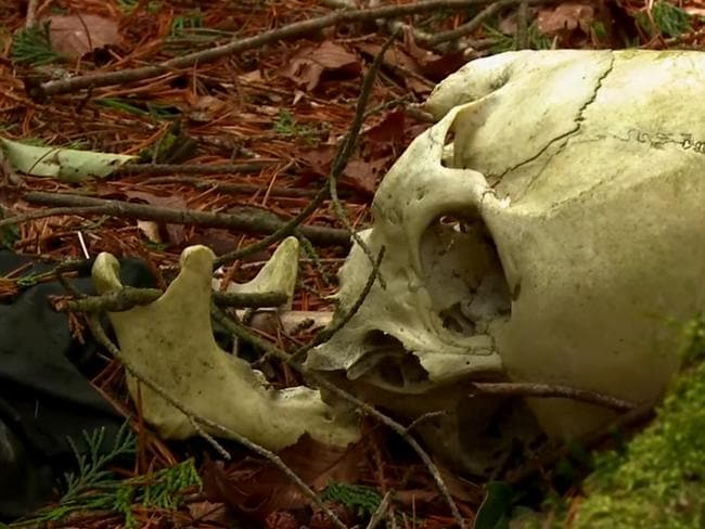 A body discovered in Aokigahara Forest. Picture: VICE.