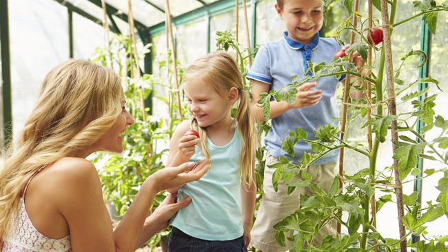 Gardening with children is an important way to teach them about where our food comes from.