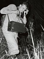 David Attenborough recording a frog chorus in Sierra Leone in 1954.