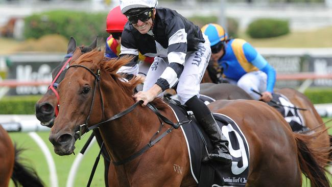 Nieta will chase a stakes win at Rosehill on Saturday.