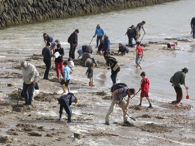Artistic pursuit ... a flood of bounty hunters with metal detectors seek their fortune on a beach in Folkestone, southeast England. Picture: Jack Taylor