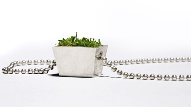 You're looking at 'Growing Jewellery Necklace B'. Picture: www.hafsteinnjuliusson.com