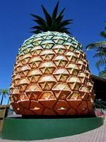 <p><strong>THE BIG PINEAPPLE <br /> Nambour, Queensland </strong><br /> <br /> The Big Pineapple was erected in 1971, stands at 16 metres high, and was heritage listed by the Queensland government in 2009.<br /> <br /> Picture: Graeme Parke</p>