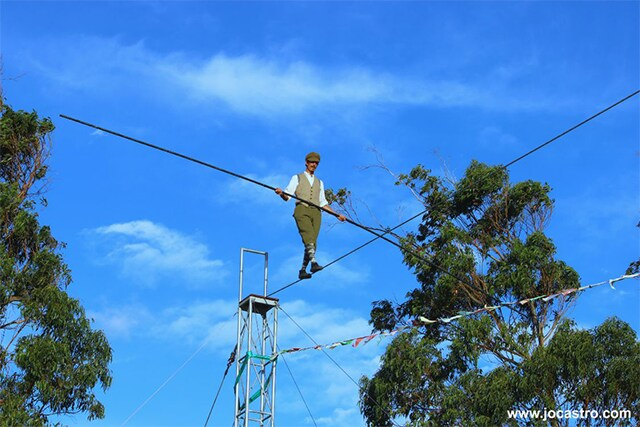 Jo-Castro-13_Up-among-the-Karri-trees-on-the-highwire-at-the-Lunar-Circus.png