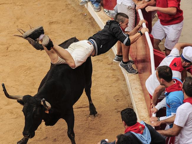 A reveler tries to protect himself off a cow in the bull ring, at the San Fermin festival, in Pamplona, Spain, Monday, July 14, 2014. Revelers from around the world arrive to Pamplona every year to take part in some of the eight days of the running of the bulls. (AP Photo/Alvaro Barrientos)