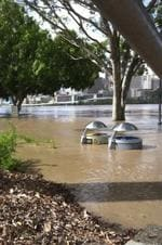 <p>Jan 13: Refuse bins poke out of the water at South Bank. (Reader picture)</p>