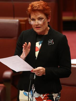 Senator Pauline Hanson speaking in the Senate Chamber, Parliament House in Canberra. Picture Kym Smith