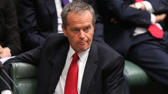 Opposition Leader Bill Shorten has urged the PM to stand up to his party's conservatives. Picture: Kym Smith