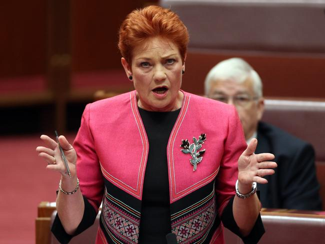 Pauline Hanson has a busy agenda in the senate as well as her party's expansion across states. Picture: Gary Ramage