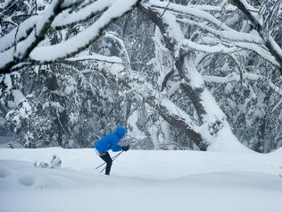 Supplied image of recent snowfall at the Mt Buller Ski Resort in the Victorian Alps, Sunday, August 6, 2017. At least 15cms of fresh snow has blanketed Mt Buller today as blizzard conditions hit resorts. (AAP Image/Progressive PR, Andrew Railton) NO ARCHIVING, EDITORIAL USE ONLY