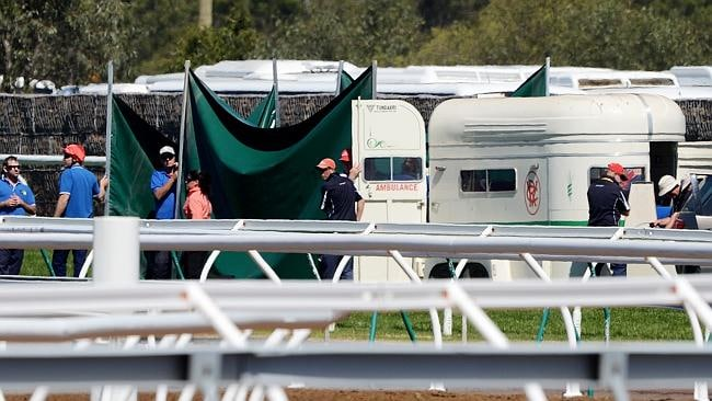 Verema is euthanised after falling during the Melbourne Cup. Photo: Jake Nowakowski