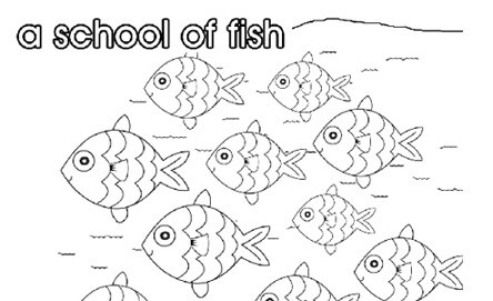 school_of_fish_444x271-jpg-20151022192355.jpg