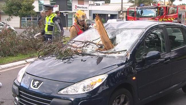 Lucky escape ... A Tree branch fell on a car on Greenhill Road in the Adelaide suburb of Unley during severe weather. Picture: Ten Eyewitness News.