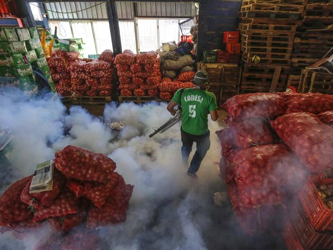 A Health Ministry worker fumigates for the Aedes aegypti mosquitoes that transmits the Zika virus at the Oriental Market in Managua, Nicaragua. Picture: AP/Inti Ocon