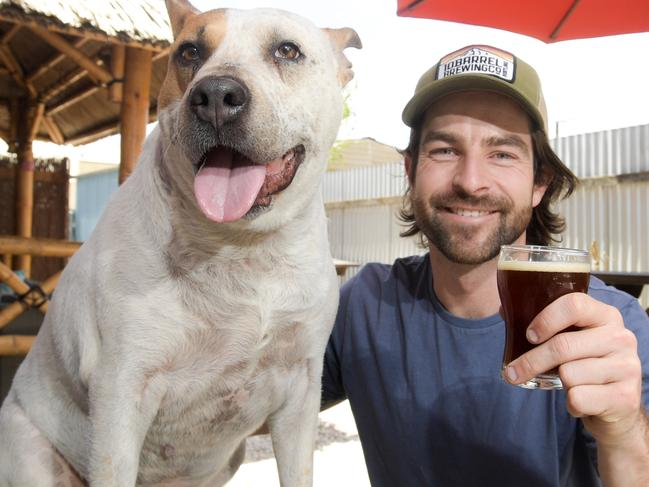 Wally, resident dog at the Sweet Amber Beer cafŽ and owner Dane Adkins, left, pose for a photo in the lead up to the Pups and Pints day held at the cafŽ this weekend in Adelaide, Monday, November 13, 2017. (AAP Image/ Morgan Sette)
