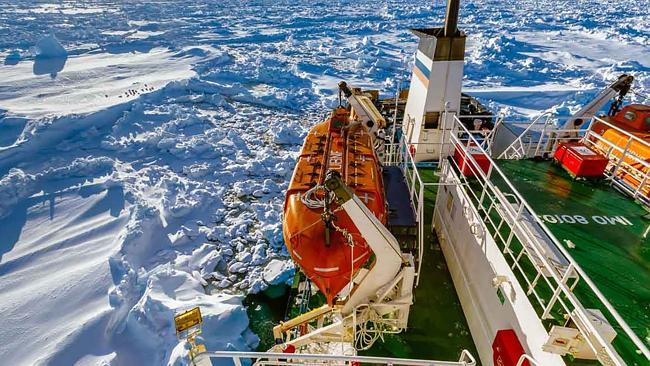 Three icebreaking ships failed in their attempts to reach the trapped MV Akademik Shokalskiy. Picture: Andrew Peacock/www.footloosefotography.com/AFP