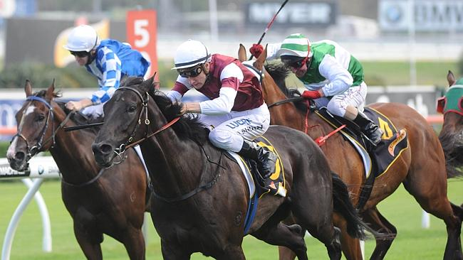 Impressive mare Appearance will be at enticing odds in the Canterbury Stakes.