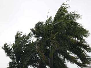 Wet weather and heavy winds swept into Darwin as cyclone Francis swerved past the mainland.