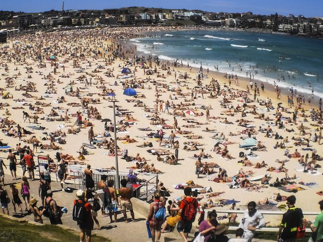 Bondi Beach was identified as a place to kill people.