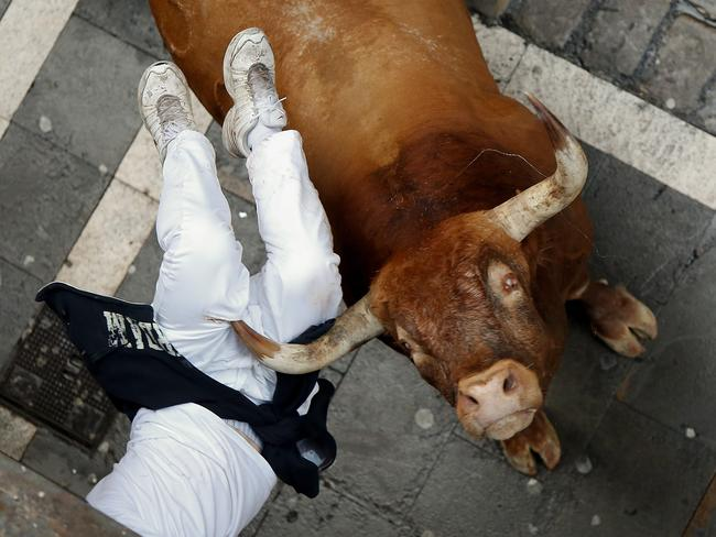 A Miura's fighting bull horns a runner at Calle Estafeta during the ninth day of the San Fermin Running Of The Bulls festival. Picture: Pablo Blazquez Dominguez