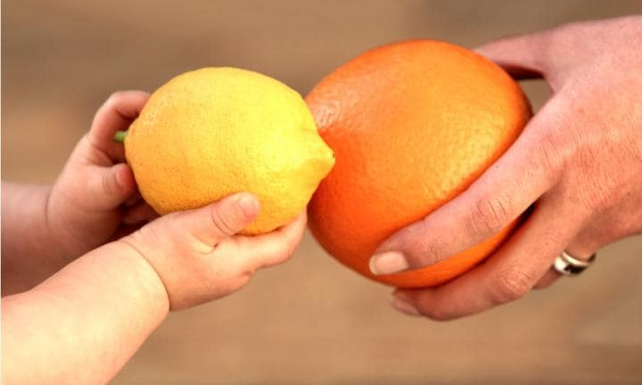 How big is your baby compared to a fruit?