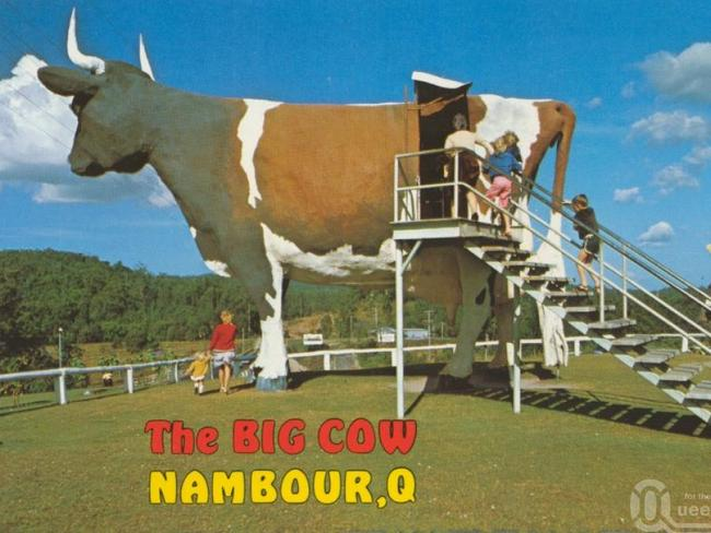 Or the Big Cow? Picture: Visit Sunshine Coast
