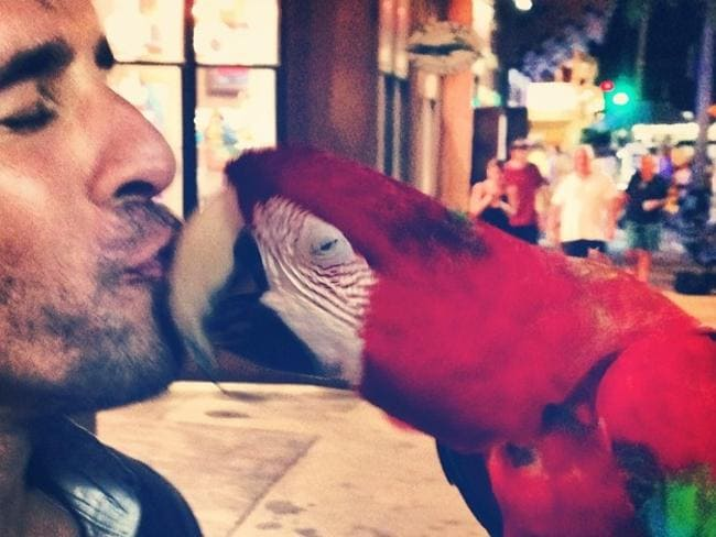 "Actor Hugh Sheridan get's lucky, ""Who's a pretty bird? #cheekypash"" Picture: Instagram"