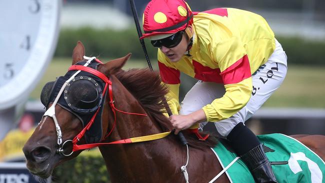 Gosford races