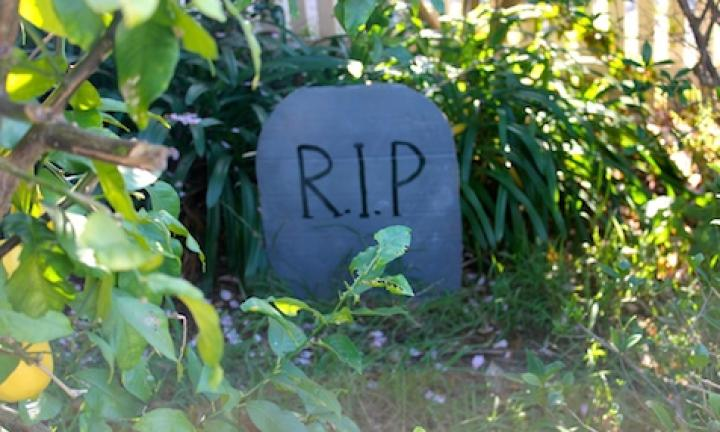 "31. Make a fake tombstone  <p>Make lots of fake tombstones and turn your front garden into a graveyard for Halloween.</p> <p><a href=""http://www.kidspot.com.au/things-to-do/activities/make-a-fake-tombstone"">See here for how to make a Fake tombstone for Halloween.</a></p>"