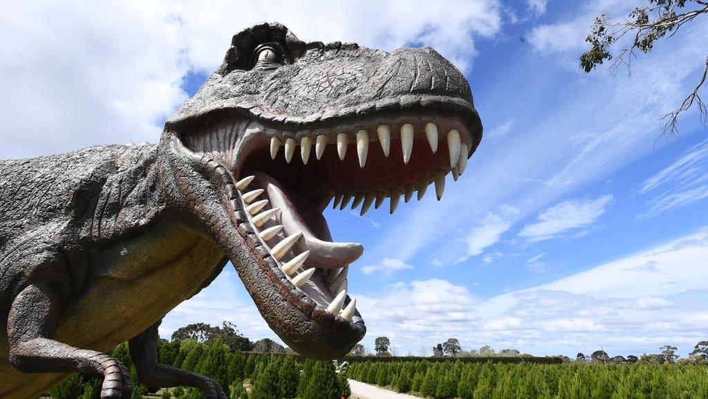 Somerville Christmas Tree Farm Dinosaurs: VCAT Approves