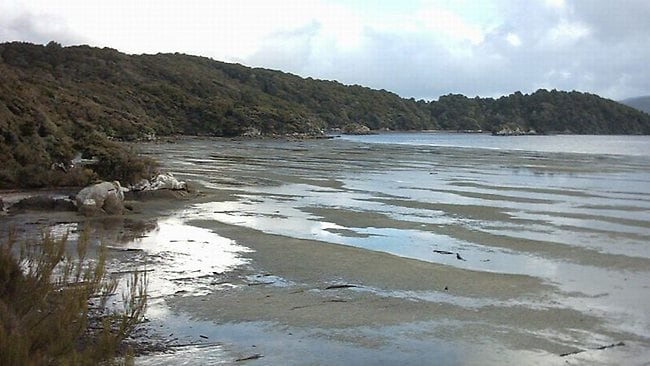 A typically scenic expanse of not even slightly miserable cold mudflats on delightful Stewart Island