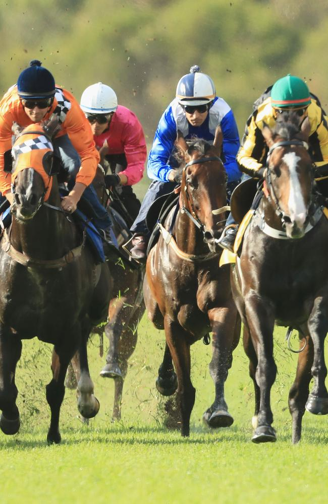 Business as usual: Hugh Bowman and champion mare Winx (blue/white silks) finish sixth in a Rosehill Gardens trial for her new campaign. Picture: Getty Images