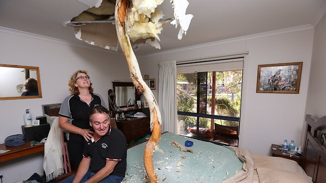 22/03/2013 NEWS: Tornado hits Bundalong. Owners of the Bunalong Caravan park had a tree crash through their roof into their bedroom. Michael and Maree Bourke. ph 03 57268600. Pic by Simon Dallinger.