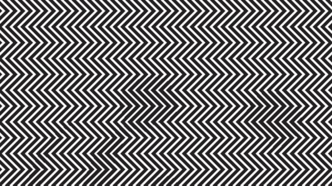 Visual Illusions In The Premises : ... the hidden panda in this mind bending optical illusion?  Adelaide Now