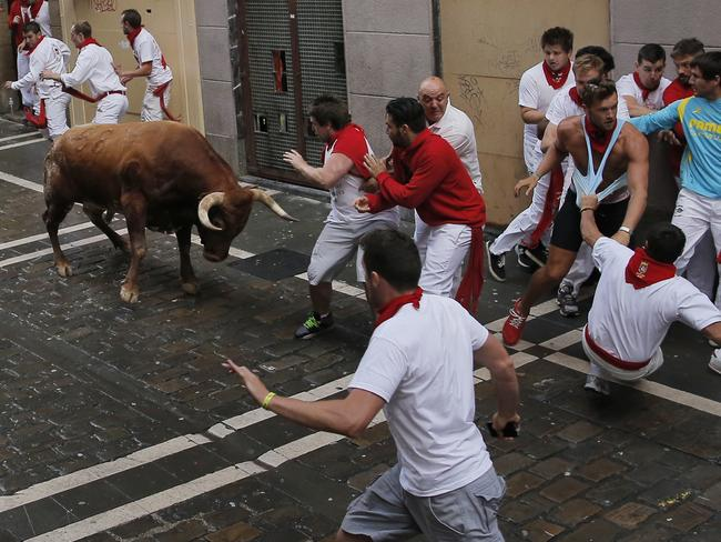 A fighting bull faces revellers ...