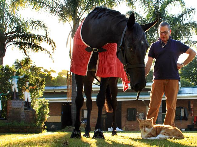"Kiwi trainer Roger James with his racehorse Silent Achiever, who doesn't quite carry off the ""great"" status."