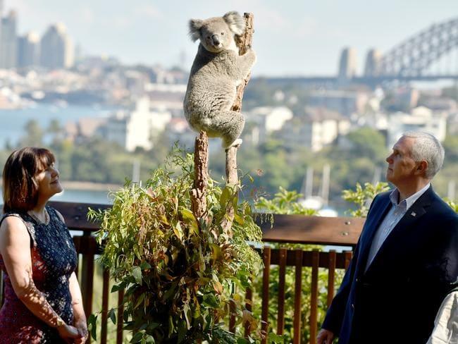 Zoo deals sydney