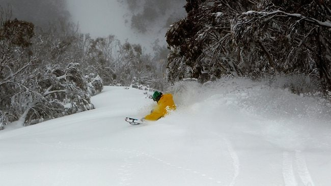 Powder skiing Hotham