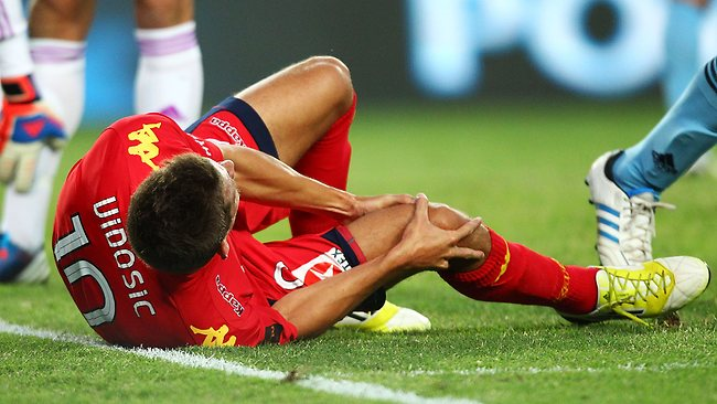 Dario Vidosic of Adelaide clasps his knee during the game against Sydney FC. Picture: Getty Images
